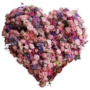 Blumenherz rose violett